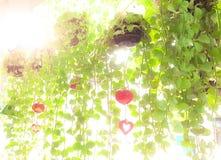 Árvore de suspensão com o sino cerâmico decorativo Fotografia de Stock