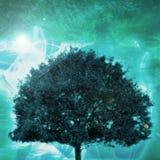 Árvore de vida Fotografia de Stock