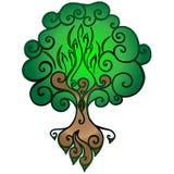Árvore de vida Uma árvore com ramos, uma cavidade e raizes imagem de stock