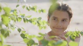 A árvore de vidoeiro bonita do galho de Rússia da menina do retrato sae estilo de vida do verão da emoção do vídeo de movimento l filme