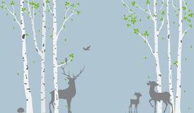 A árvore de vidoeiro com cervos e os pássaros mostram em silhueta o fundo para a etiqueta do papel de parede ilustração stock