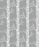 Árvore de vidoeiro Teste padrão sem emenda Imagem de Stock Royalty Free