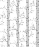 Árvore de vidoeiro Teste padrão sem emenda Imagens de Stock