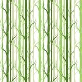 Árvore de vidoeiro Teste padrão sem emenda Vetor elemento para papéis de parede, fundo do fabricDesign da site, convite da festa  Imagem de Stock