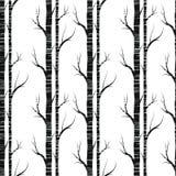 Árvore de vidoeiro Teste padrão sem emenda Vetor elemento para papéis de parede, fundo do fabricDesign da site, convite da festa  Imagens de Stock Royalty Free
