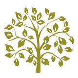 Árvore decorativa Fotos de Stock