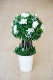 Árvore decorativa Fotos de Stock Royalty Free