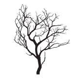 Árvore desencapada da silhueta preta Foto de Stock Royalty Free