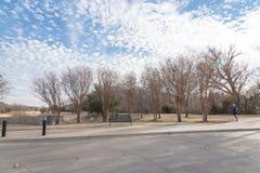 Árvore desencapada do parque urbano, nuvem de altocumulus, lago da fonte em Texas, foto de stock royalty free
