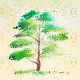 Árvore, desenhada muito elegante ilustração stock