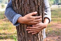 Árvore do abraço da mão das mulheres foto de stock