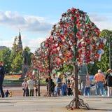 Árvore do amor Foto de Stock Royalty Free