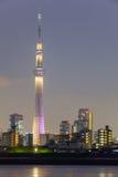 Árvore do céu de Tokyo Imagem de Stock