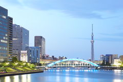 Árvore do céu do Tóquio fotos de stock