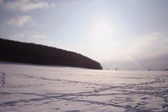Árvore do céu do inverno Fotografia de Stock Royalty Free