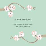 Árvore do chá - salvar o convite da data fotografia de stock