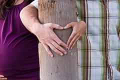 Árvore do coração Imagens de Stock Royalty Free
