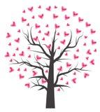 Árvore do coração com folha do coração Fotografia de Stock Royalty Free