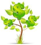 Árvore do dólar Imagens de Stock Royalty Free