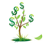 Árvore do dólar ilustração royalty free