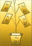 Árvore do dólar Fotos de Stock