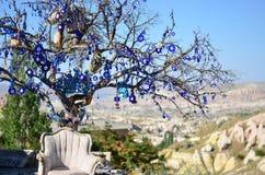 Árvore do desejo Fotografia de Stock