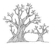 Árvore do desenho da mão ilustração royalty free