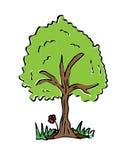 Árvore do desenho dos desenhos animados com cor Fotografia de Stock