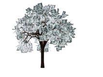 A árvore do dinheiro Fotos de Stock