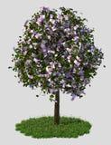 Árvore do dinheiro, cinco cem euro- contas. ilustração royalty free