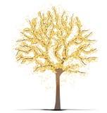 Árvore do Ginkgo ilustração do vetor