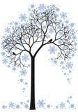 Árvore do inverno,   ilustração do vetor