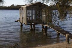Árvore do molhe e do sheoak, rio de Maroochy Imagem de Stock Royalty Free