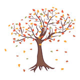 Árvore do outono Fotos de Stock Royalty Free