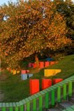 Árvore do outono e projeto da paisagem Fotos de Stock Royalty Free