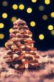 Árvore do pão-de-espécie do Natal com luzes Imagens de Stock Royalty Free