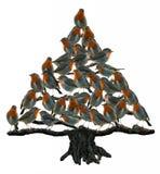 Árvore do pisco de peito vermelho Imagem de Stock Royalty Free