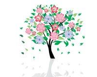 Árvore do verão Fotografia de Stock Royalty Free