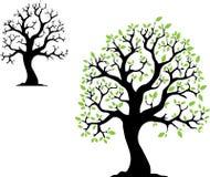 Árvore do vetor com folhas Fotografia de Stock Royalty Free