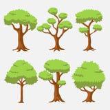 Árvore do vetor dos desenhos animados com cor brilhante ilustração do vetor