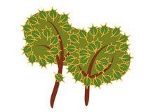 Árvore dois Ilustração Stock