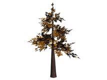 Árvore dos bonsais Ilustração Stock