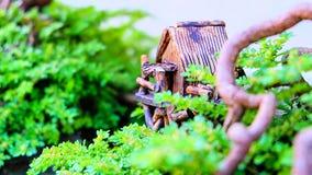 Árvore dos bonsais das casas modelo Fotografia de Stock Royalty Free