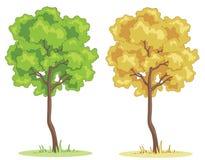 Árvore dos desenhos animados Imagens de Stock