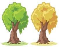 Árvore dos desenhos animados Foto de Stock