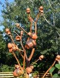 Árvore dos jarros em Bucareste, Romênia Fotografia de Stock Royalty Free