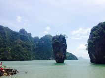 Árvore dos manguezais da praia do mar de Tailândia Ásia da ilha Foto de Stock Royalty Free
