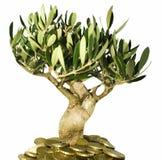 Árvore dourada Imagem de Stock