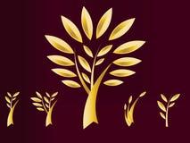 Árvore dourada Imagens de Stock Royalty Free