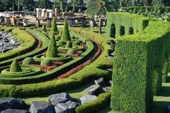 Árvore e arbustos no parque Imagem de Stock Royalty Free